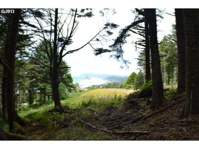 Silverpoint, Cannon Beach, OR 97110 (MLS #13574570) :: The Lynne Gately Team