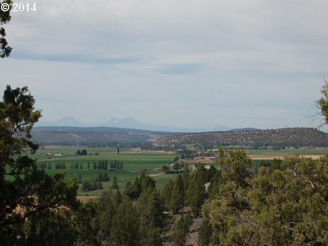 1025 NE Washington Pl, Prineville, OR 97754 (MLS #14040438) :: Cano Real Estate