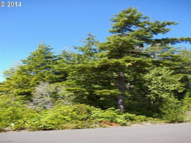 184 SW Gull Station #184, Depoe Bay, OR 97341 (MLS #14247833) :: Hatch Homes Group