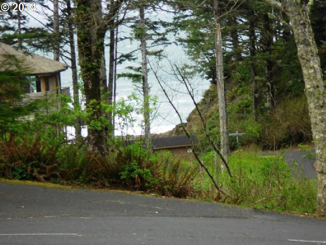 119 Walking Wood, Depoe Bay, OR 97341 (MLS #14563180) :: Cano Real Estate
