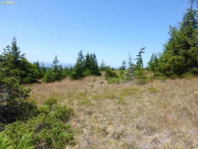 31805 Indian Hills Dr, Gold Beach, OR 97444 (MLS #15393732) :: Cano Real Estate