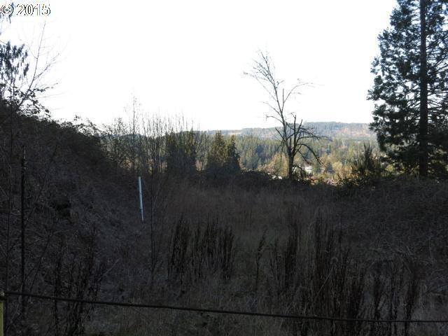 1st Ave Tl802, Sweet Home, OR 97386 (MLS #15399683) :: The Dale Chumbley Group