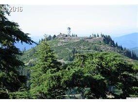 Fairview Peak - Photo 1