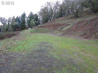 679 SE Fisher Dr, Roseburg, OR 97470 (MLS #16411617) :: Cano Real Estate