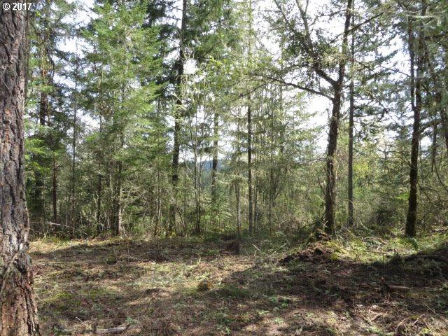 Bear Ridge Rd #1, Creswell, OR 97426 (MLS #17041214) :: Hatch Homes Group