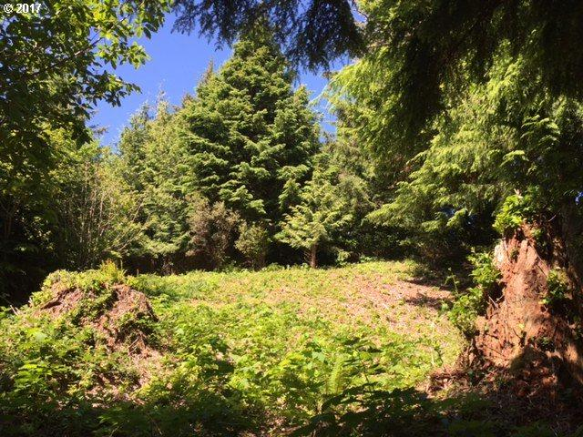 553 Fairway Dr, Gleneden Beach, OR 97388 (MLS #17082387) :: Cano Real Estate