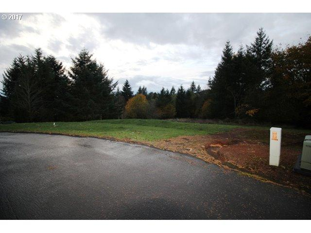 13000 NE 238TH Ct, Brush Prairie, WA 98606 (MLS #17096599) :: The Dale Chumbley Group