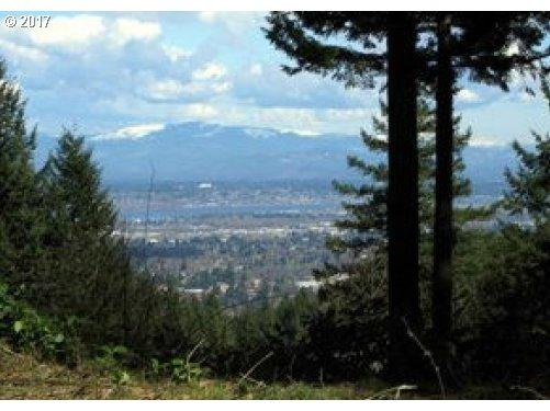 9625 NW Lightning Ridge Dr, Portland, OR 97229 (MLS #17130812) :: Hatch Homes Group