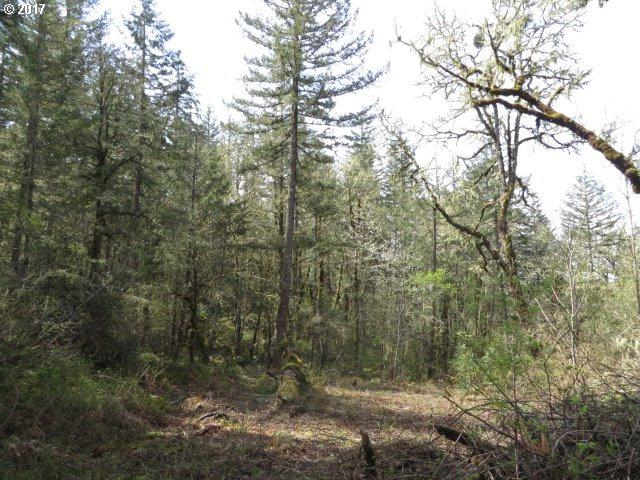 Bear Ridge Rd #2, Creswell, OR 97426 (MLS #17162438) :: Hatch Homes Group