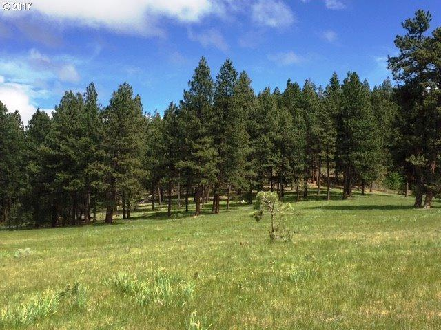0 SE Grizzly Rd, Madras, OR 97741 (MLS #17233534) :: Change Realty