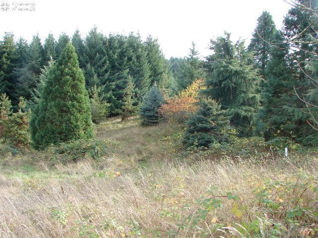 0 Old Parrett Mountain, Newberg, OR 97132 (MLS #17383238) :: Hillshire Realty Group