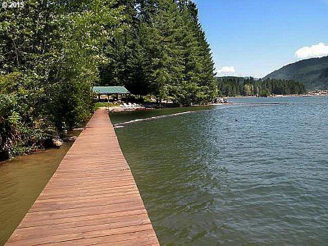 N Shore Sp2  Monarch Rd, Cougar, WA 98616 (MLS #17527669) :: Cano Real Estate