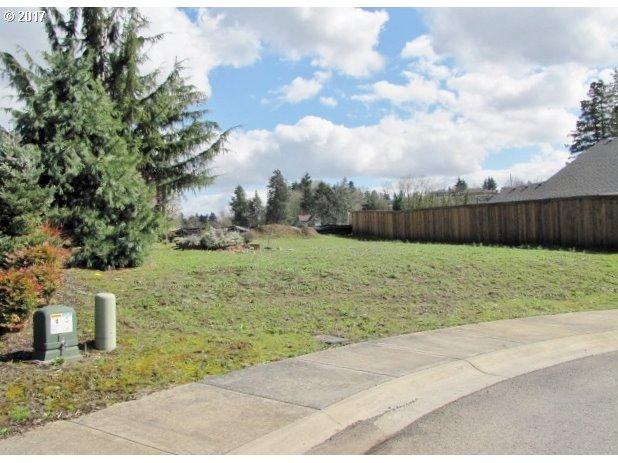 7101 NW 23RD Ct, Vancouver, WA 98665 (MLS #17548440) :: Change Realty