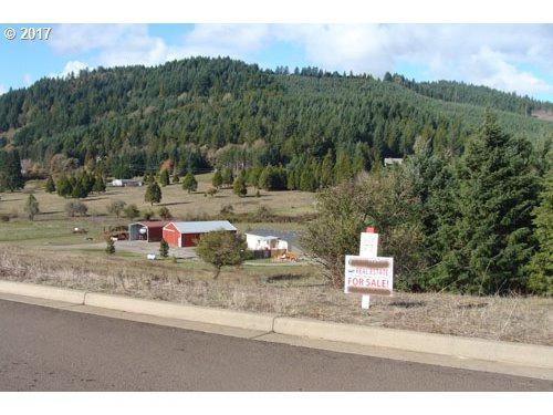 N Bugle Loop N #77, Oakridge, OR 97463 (MLS #17560195) :: Hatch Homes Group
