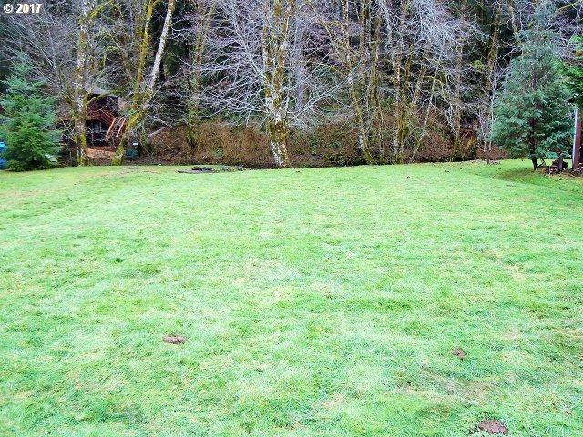 10304 Field Crest Dr, Birkenfeld, OR 97016 (MLS #17578800) :: The Dale Chumbley Group