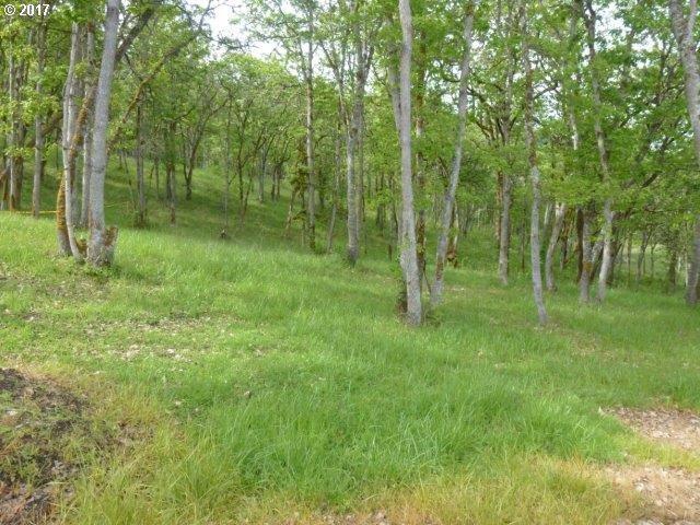 124 Sylvan Vista Ct - Photo 1