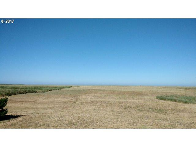 S Ocean Dr, Warrenton, OR 97146 (MLS #17610074) :: Cano Real Estate