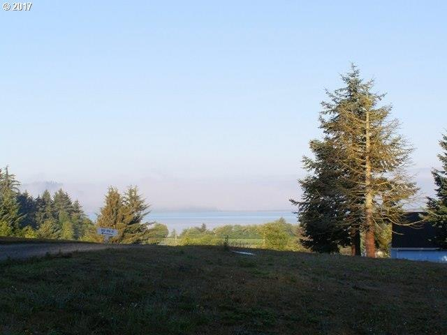 Woods St, Bay City, OR 97107 (MLS #17647503) :: Cano Real Estate