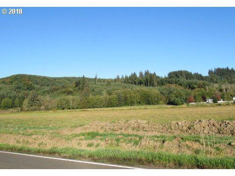 Elk Ridge Dr, Cathlamet, WA 98612 (MLS #18045412) :: Realty Edge