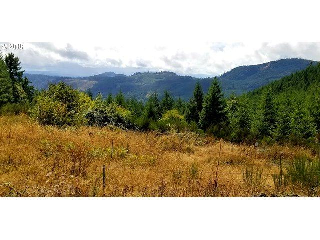 6815 NW High Heaven Rd, Mcminnville, OR 97128 (MLS #18050280) :: Premiere Property Group LLC