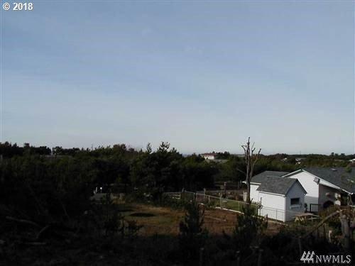 30505 J Pl, Ocean Park, WA 98640 (MLS #18052823) :: McKillion Real Estate Group