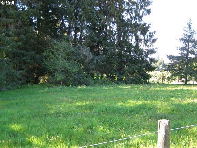 Hurliman Hill Rd, Tillamook, OR 97141 (MLS #18060453) :: The Sadle Home Selling Team