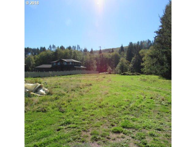 600 Elochoman Valley Rd, Cathlamet, WA 98612 (MLS #18097450) :: McKillion Real Estate Group