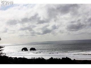 Pacific View Dr, Rockaway Beach, OR 97136 (MLS #18117847) :: The Dale Chumbley Group