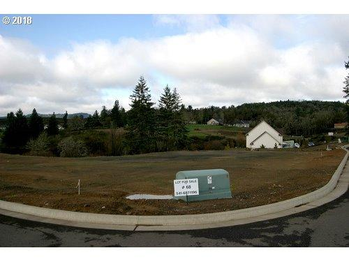 591 Wildcat Canyon Rd, Sutherlin, OR 97479 (MLS #18141516) :: Hatch Homes Group