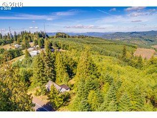 3903 Mt Brynion Rd, Kelso, WA 98626 (MLS #18163906) :: Harpole Homes Oregon
