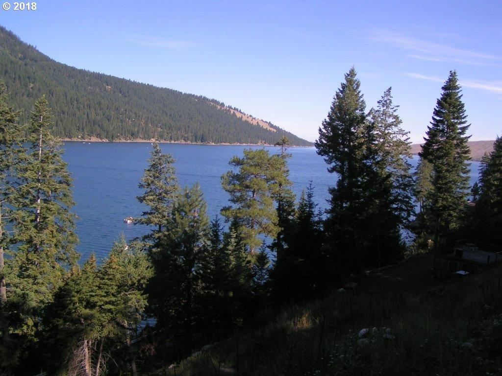 0 Wallowa Lake Hwy - Photo 1