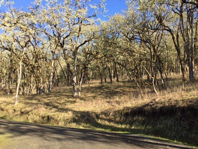 0 Elmar Dr, Winchester, OR 97495 (MLS #18206010) :: Keller Williams Realty Umpqua Valley
