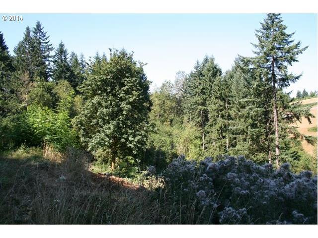 17455 S Bradley Rd, Oregon City, OR 97045 (MLS #18306593) :: McKillion Real Estate Group