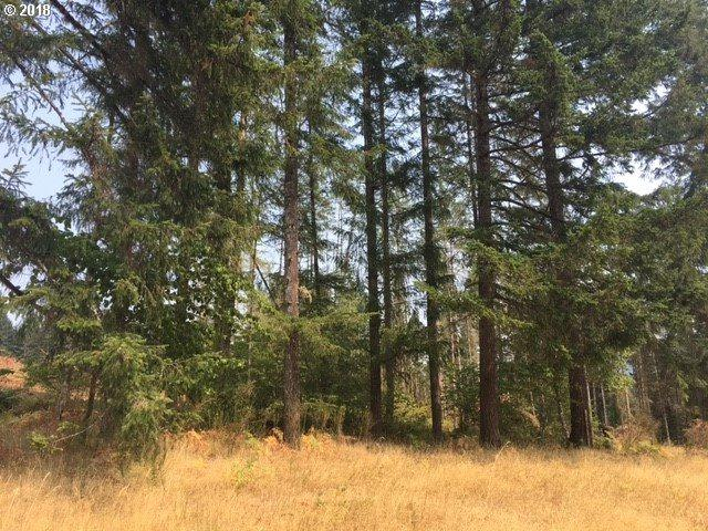 Pentilla Ln, Springfield, OR 97478 (MLS #18349582) :: Team Zebrowski