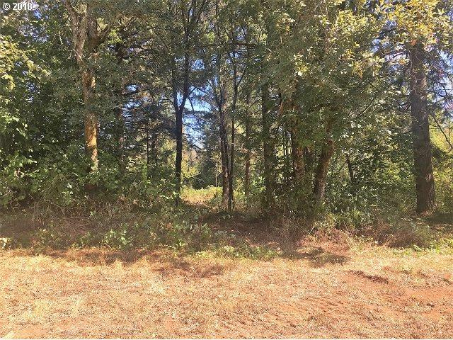 0 S Carus Rd, Oregon City, OR 97045 (MLS #18354458) :: Fox Real Estate Group
