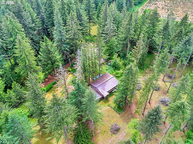 29615 SE Old Ranch Dr, Estacada, OR 97023 (MLS #18375409) :: Matin Real Estate