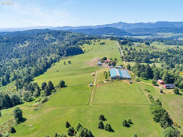 17346 NW Oak Ridge Rd, Yamhill, OR 97148 (MLS #18381253) :: The Sadle Home Selling Team