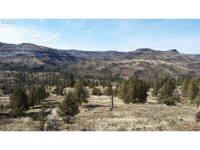 Wall Creek Rd, Monument, OR 97864 (MLS #18430212) :: Hatch Homes Group
