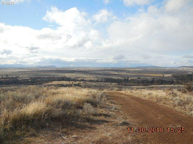 Saxton Bane Rd, Goldendale, WA 98620 (MLS #18445420) :: Townsend Jarvis Group Real Estate