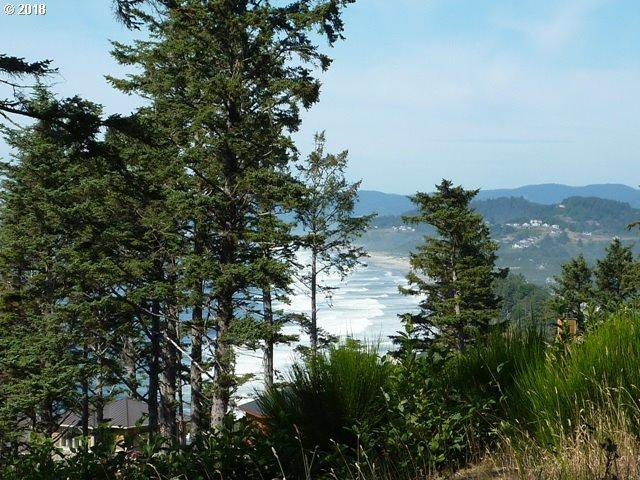 4800 Tl South Beach Rd, Neskowin, OR 97149 (MLS #18454614) :: Hatch Homes Group