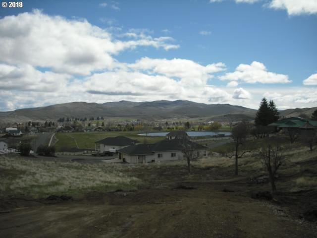 Scenic Vista Lane #10, Baker City, OR 97814 (MLS #18528122) :: Premiere Property Group LLC