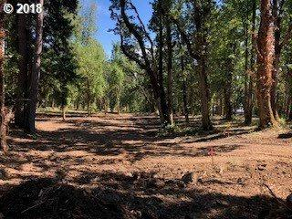 Lot 8 Of Block 11 #8, Springfield, OR 97477 (MLS #18544831) :: Portland Lifestyle Team