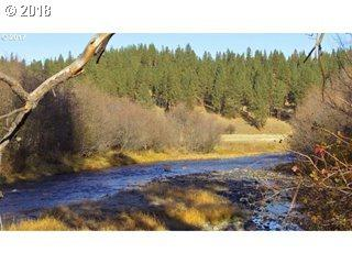 Grande Ronde River Rd, Starkey, OR 97814 (MLS #18545221) :: TLK Group Properties