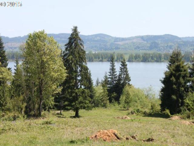 Twin Springs Lot 2, Cathlamet, WA 98612 (MLS #18644813) :: The Dale Chumbley Group