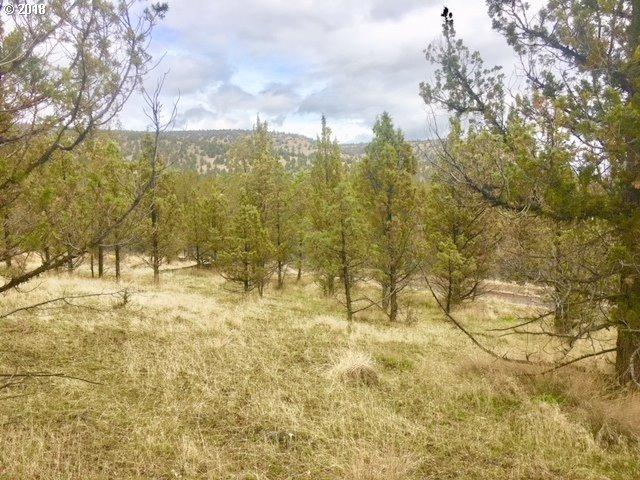 0 NW Irvine Ave, Prineville, OR 97754 (MLS #18649152) :: Hatch Homes Group