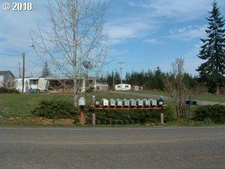 202 Drews Prairie Rd, Toledo , WA 98591 (MLS #18662377) :: Hatch Homes Group
