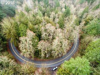 NW Beck Rd, Portland, OR 97231 (MLS #18666306) :: Matin Real Estate