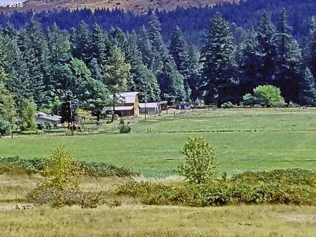40645 Little Fall Creek Rd, Fall Creek, OR 97438 (MLS #18676178) :: Song Real Estate
