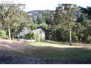 214 Gray Squirrel Ct, Winchester, OR 97495 (MLS #19022563) :: McKillion Real Estate Group