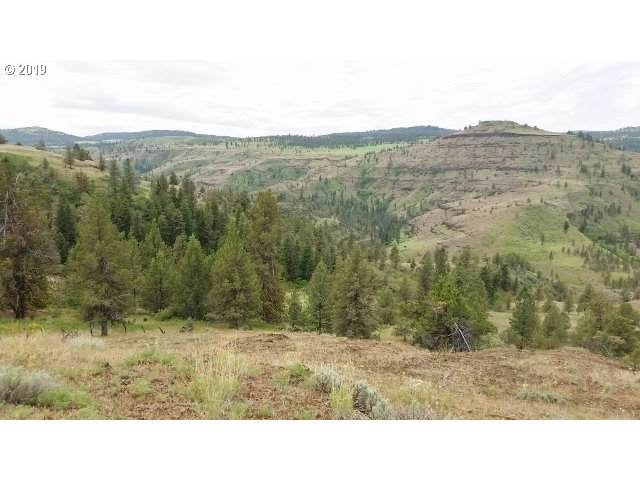 0 Wall Creek Road, Monument, OR 97864 (MLS #19080321) :: Townsend Jarvis Group Real Estate